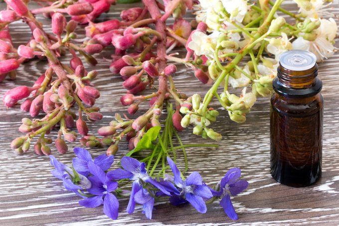 La florithérapie et ses bienfaits sur la santé sont multiples.