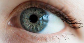 L'iridologie est une approche qui étudie l'iris en vue de détecter des maladies potentielles.
