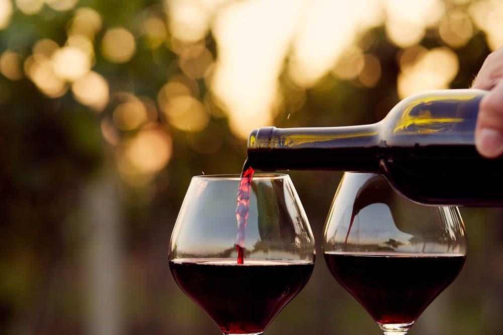 Goûtez les vins du Domaine Les Bromes Léon Courville.