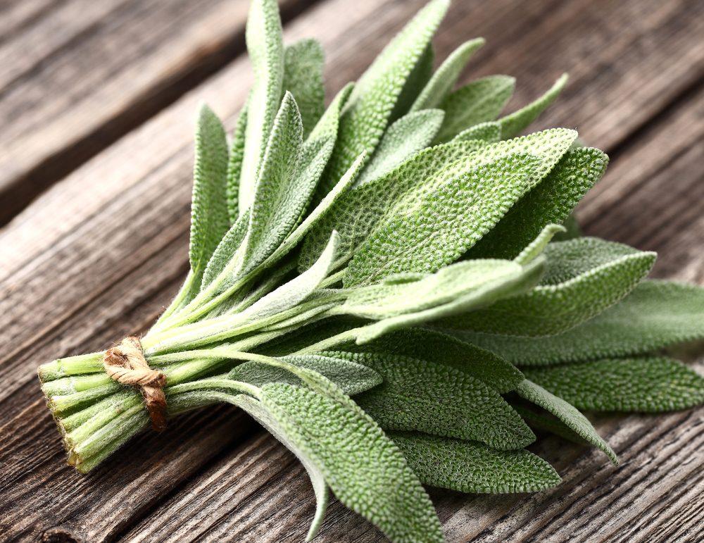 La sauge est efficace pour chasser les mauvaises odeurs dans vos espadrilles.
