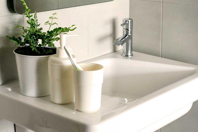 Le meilleur endroit pour mettre une plante de votre maison est la salle de bain.