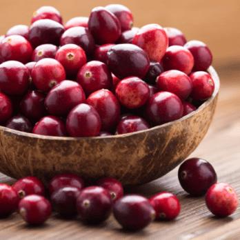 Canneberges: 10 bienfaits et vertus santé de la canneberge