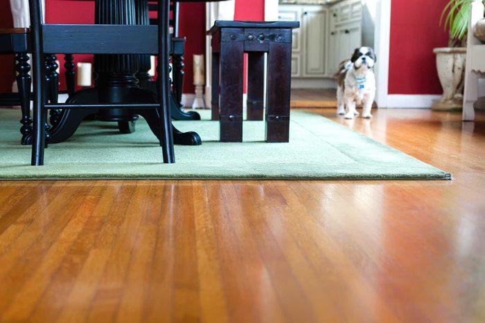 Exhiber le plus possible les planchers de bois franc.