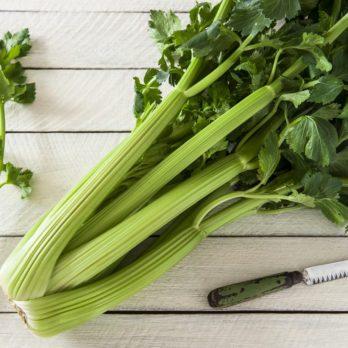 Céleri: les bienfaits d'un légume faible en calories