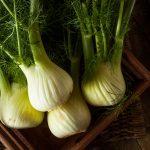 Fenouil : bienfaits et vertus d'un légume faible en calories