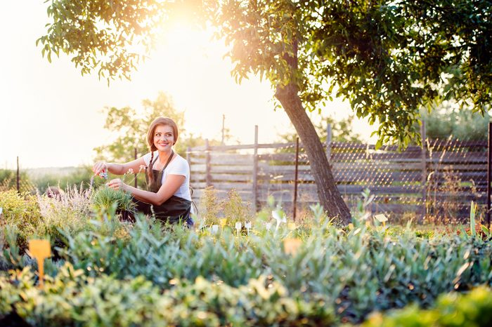 Faites du jardinage pour renforcer vos muscles des bras.