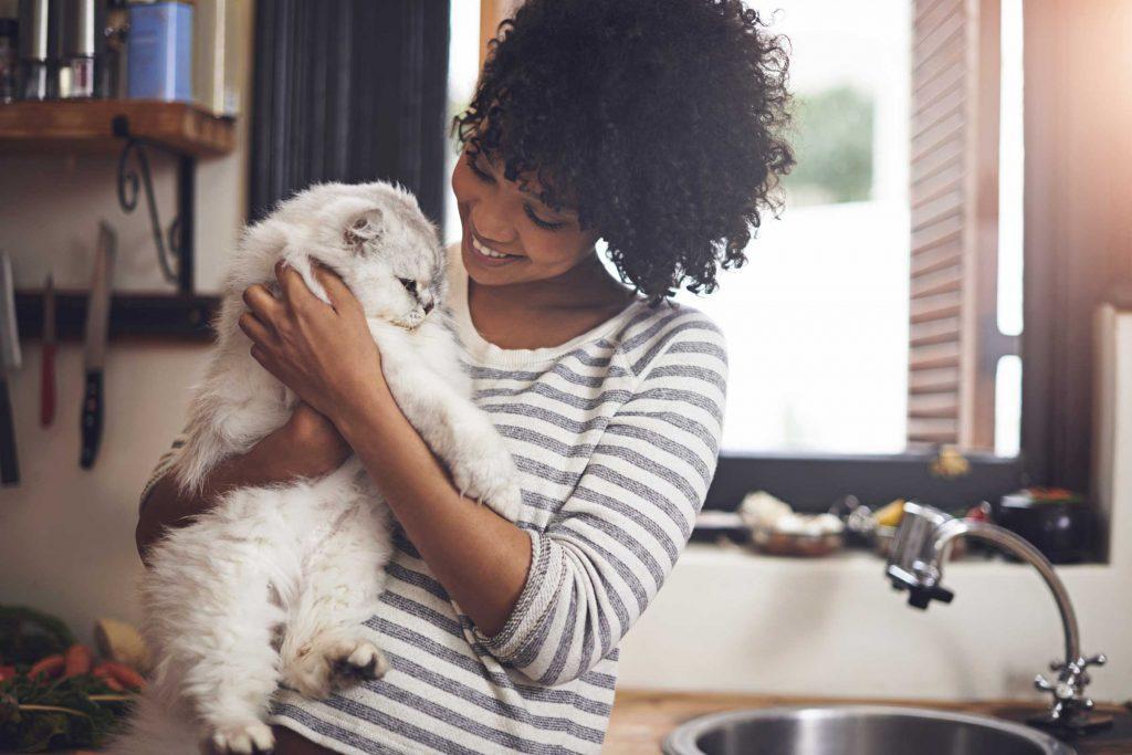 Il existe des préjugés envers les gens qui aiment les chats.