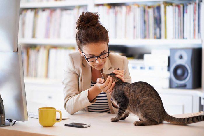 Les chats utilisent les miaulements pour communiquer avec les humains.