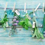 12 aliments frais à conserver séparément