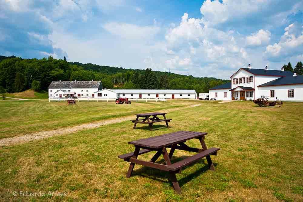 Visitez la Laiterie Charlevoix à Baie-Saint-Paul