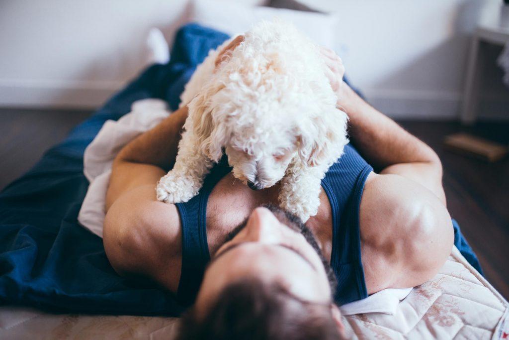 Sommeil: dormir sans animal de compagnie