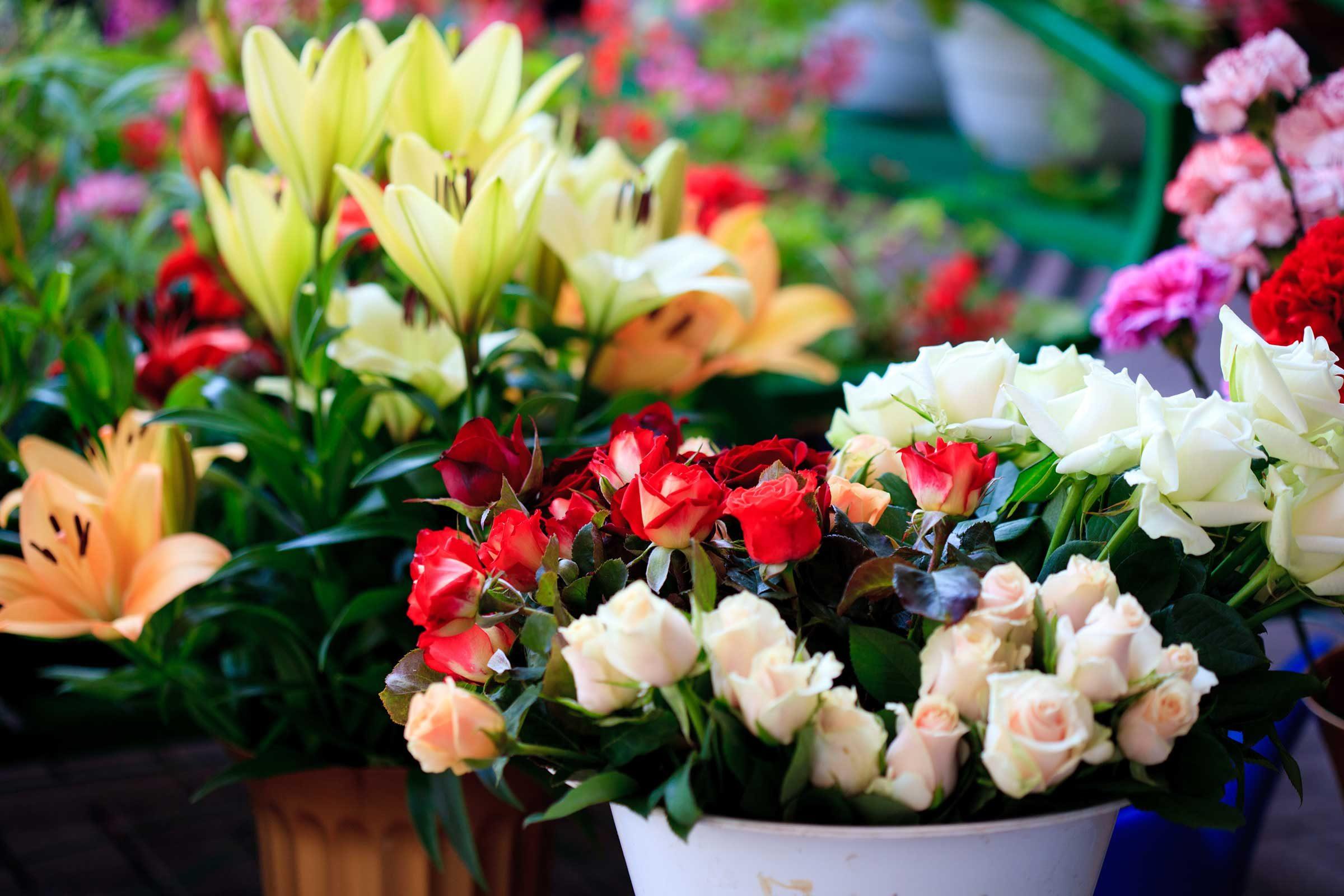 Les fleurs sont un moyen unique de dire « je tiens à toi ».