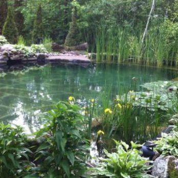 15 idées originales de jardins de rêve à recréer chez soi