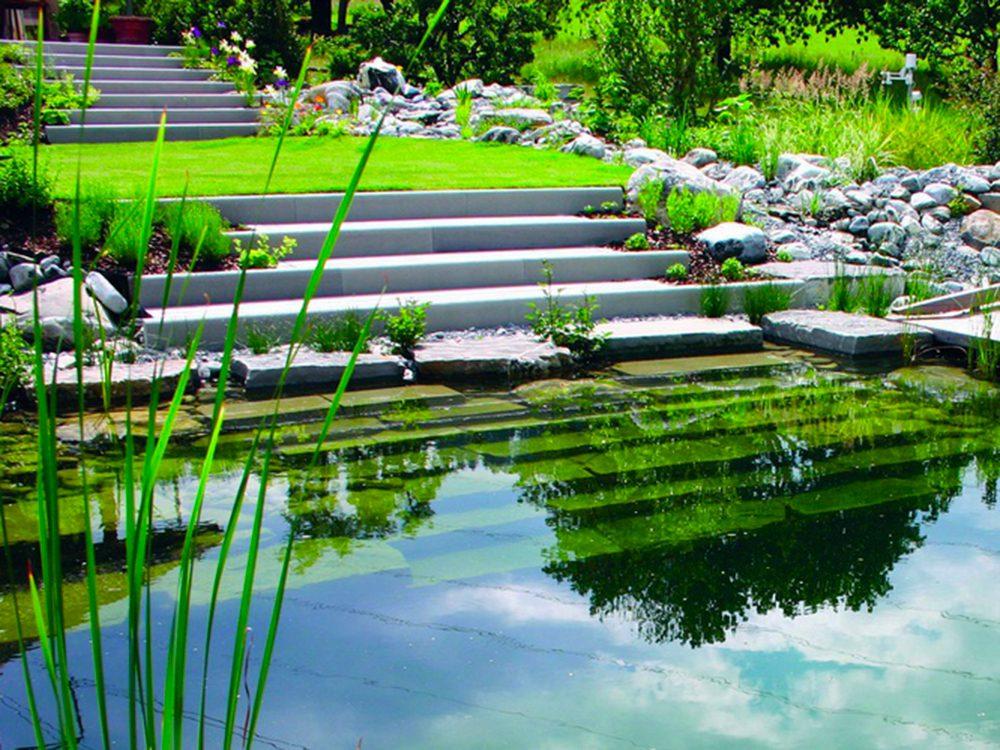 Jardin de rêve: un bassin de baignade écologique.