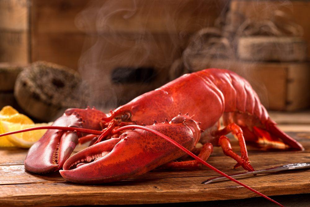 La cuisson au micro-ondes est idéale pour le homard et surpasse la cuisson à l'étouffée ou au grill.