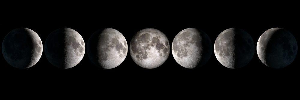 La lunaison est un cycle complet qui comprend 8 phases. Elle forme un D lorsqu'elle croît et un C lorsqu'elle décroît.