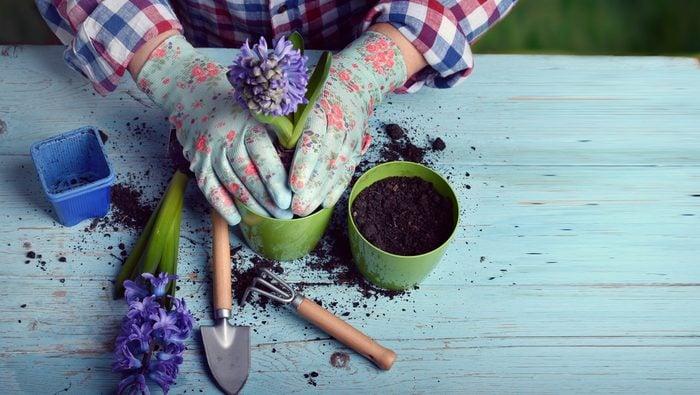 Idée bien-être: le jardinage