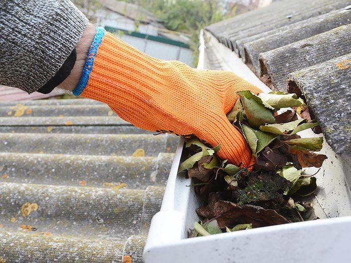 Inspectez les gouttières de votre maison