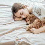 13 secrets étonnants que votre chien connaît à propos de vous