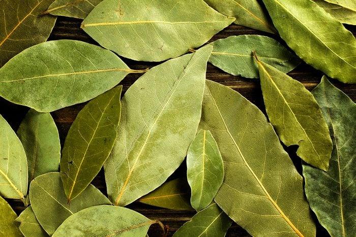 Les feuilles de laurier, un remède naturel contre les flatulences