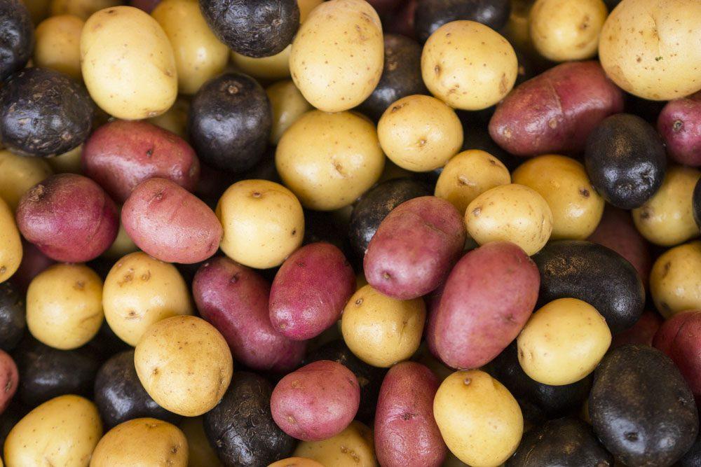 La pomme de terre pour soigner les troubles digestifs