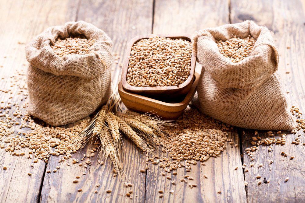 Le blé est souvent à la source d'intolérances et d'autres maladies.