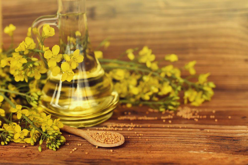 La majorité des huiles de canola sont fabriquées avec des OGM.