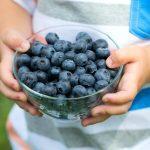 Des bleuets pour des enfants plus souriants