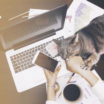 15 règles à suivre pour bien travailler depuis la maison