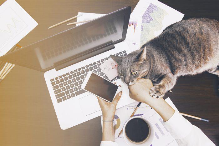 Télétravail: les avantages du travail à la maison.