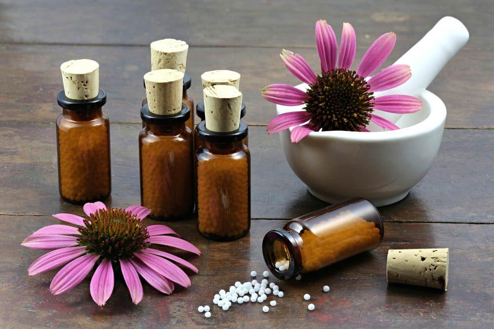 Remède naturel contre le mal de gorge : l'échinacée.
