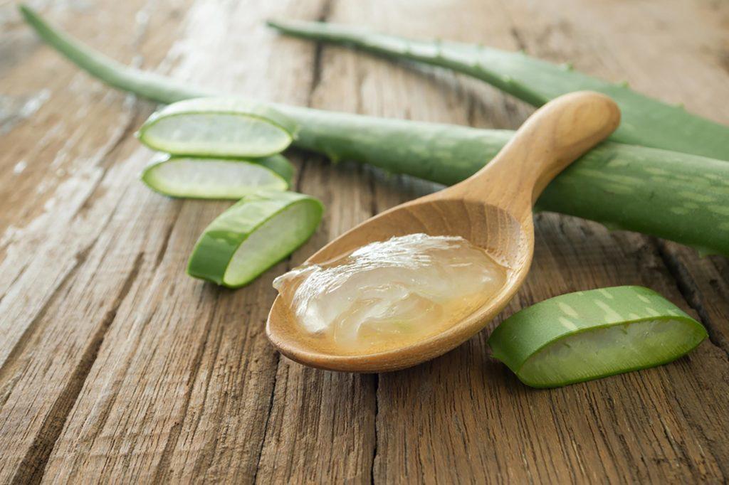 Le gel d'aloès vera peut accélérer la guérison de l'aphte.