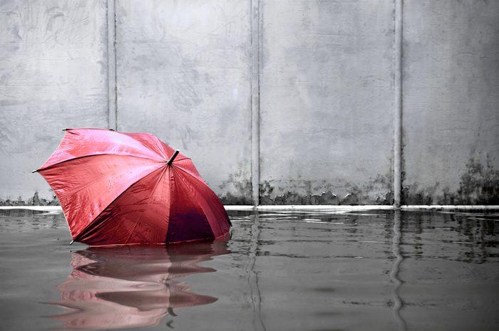 Encore une inondation à Windsor : deux tempêtes du siècle en une seule année