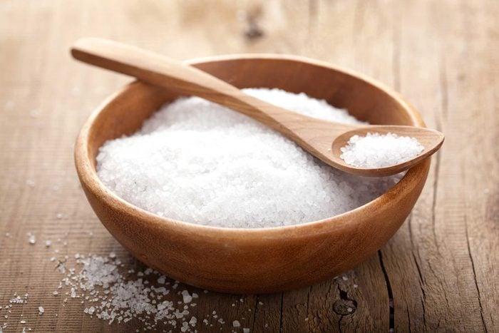 Votre chien ne peut pas manger de sel