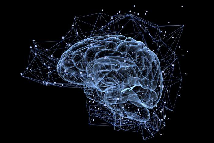 Votre cerveau