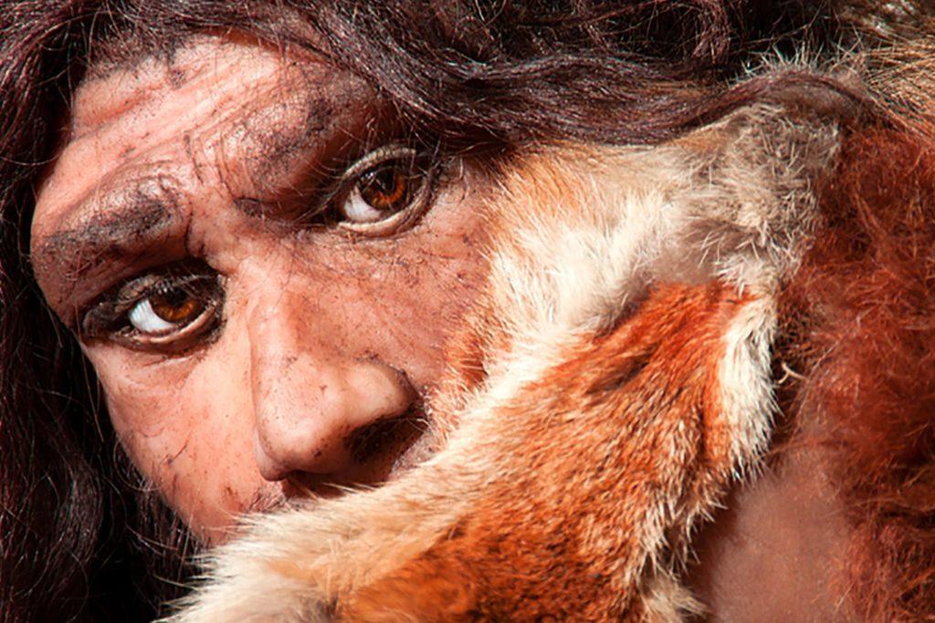 Mythe: l'homme de Néandertal était un ancêtre moins évolué de l'homme