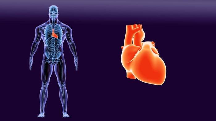 Qu'est-ce qu'un souffle au cœur?