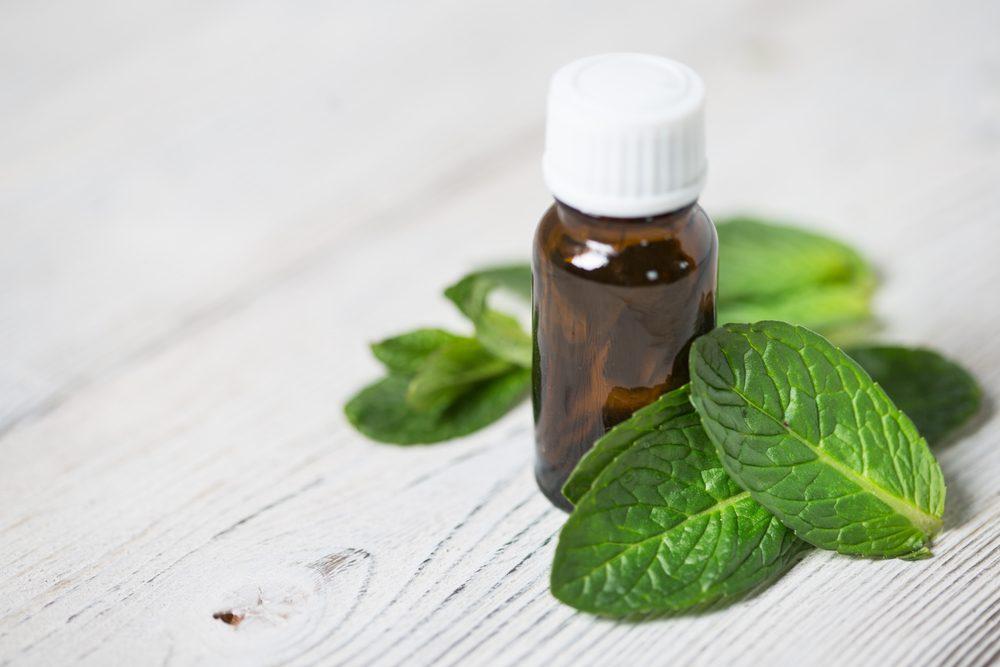 Pour soulager la toux sèche ou les maux de gorge : huile de menthe poivrée