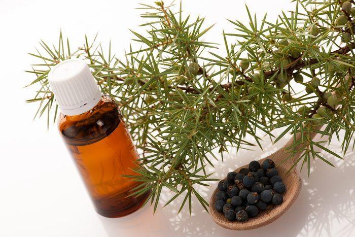 Pour soulager et guérir le rhume : l'huile de genévrier
