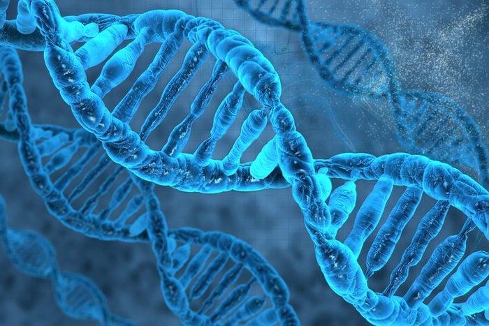 Nous avons quand même beaucoup d'ADN humai