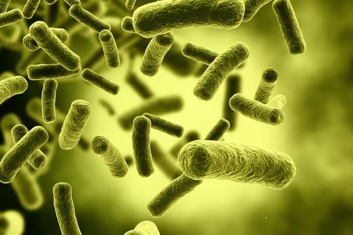 À peu près la moitié de votre corps est composé de bactéries