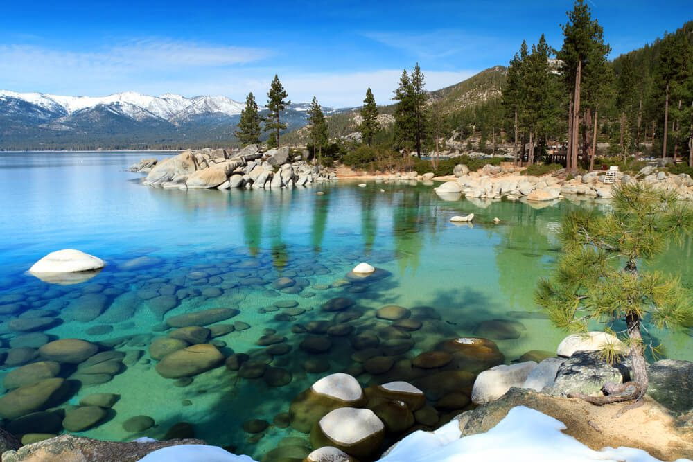 Nagez dans le Lac Tahoe