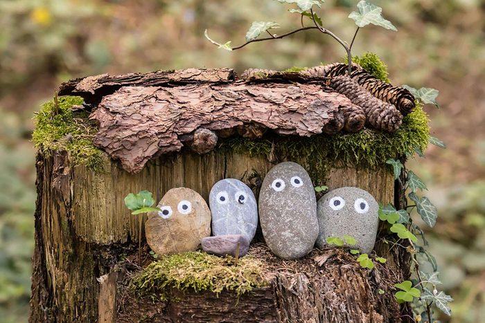 1975 - Pet Rocks