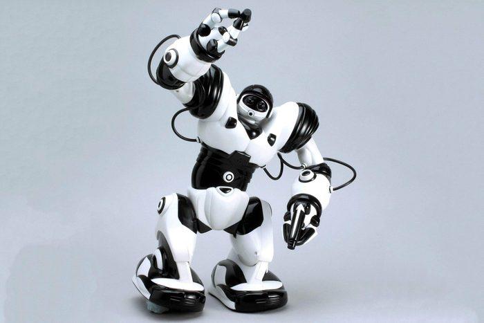 2003 – Robosapien