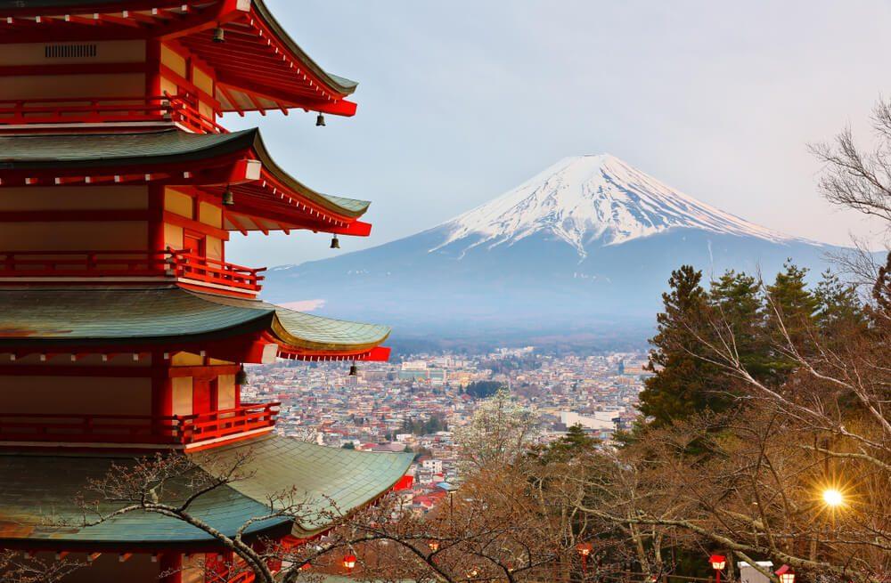 Vivez un choc culturel à Tokyo