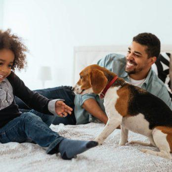 Allergies dans la maison: 14 astuces de médecins pour vous protéger