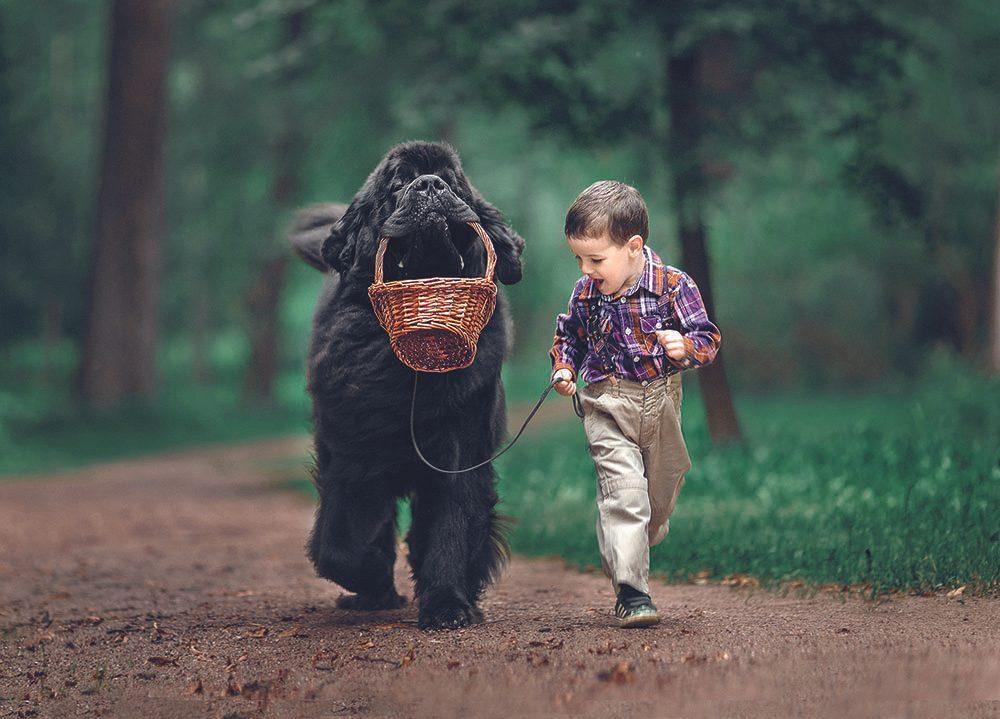 Le jeune Théodore marche aux côté de son ami Ringo.