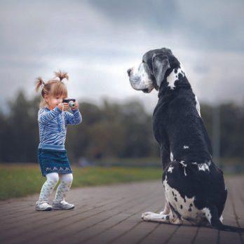 Grands chiens et petits enfants!