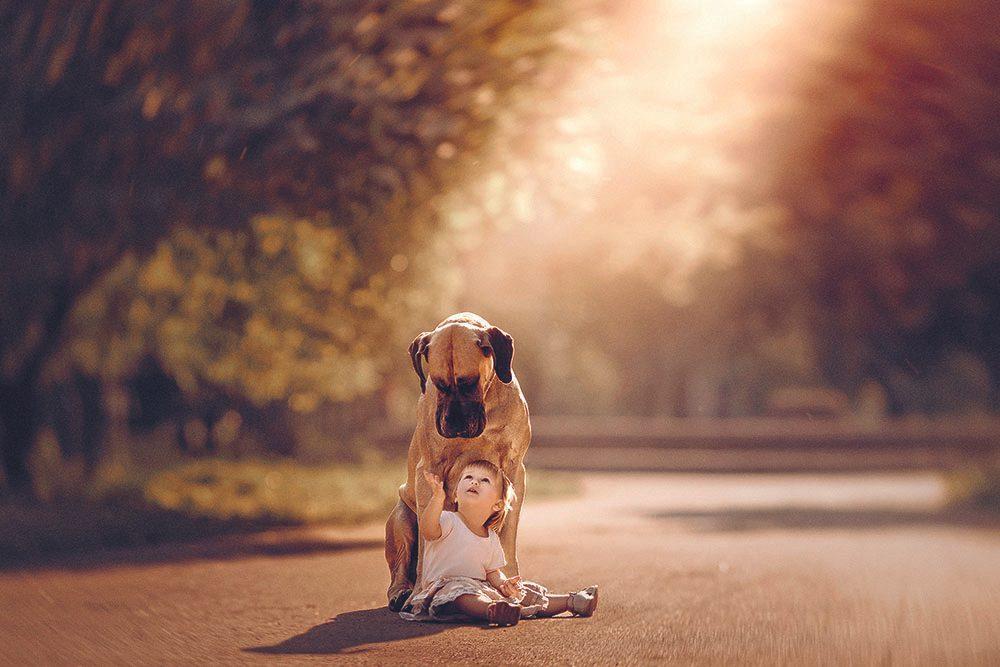 Alice et son ami Sean, un dogue allemand