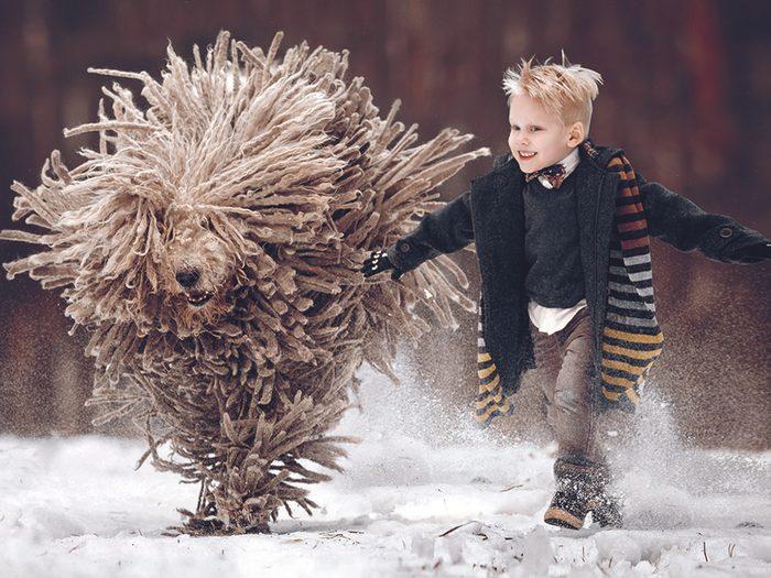 Arthur et son ami le grand chien Zeus, un komondor